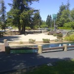Out and About in One of the Parks in Cupertino This Weekend