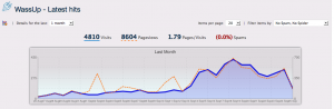 8000 page views a month wassup website stats