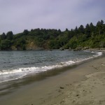 college cove near trinidad northern california pacific ocean