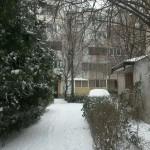 constanta winter